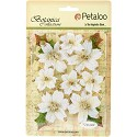 Petaloo - Botanical Collection - Regal Velvet Poinsettia White/Gold