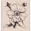 Hero Arts - Mounted Rubber Stamp 3.5
