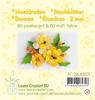 Leane Creatief - Meeldraden - pearl  yellow