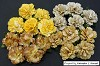 WOC Flowers - Mixed Earth Tone Carnation Flowers - 25mm