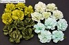 WOC Flowers - Mixed Green Carnation Flowers - 25mm
