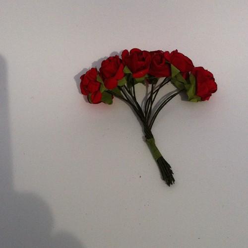 Roosjes - rood - 12 stuks