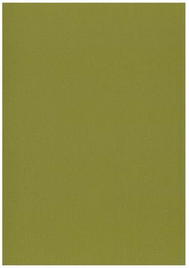 Cardstock Basic Paper - 30,5 x 30,5 cm - 2039 army