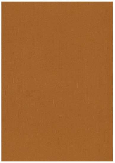 Cardstock Basic Paper - 30,5 x 30,5 cm - 2061 taupe