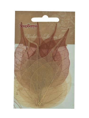 ScrapBerry`s - Skeleton leaves - set of 8 - 2 colour mixed browns